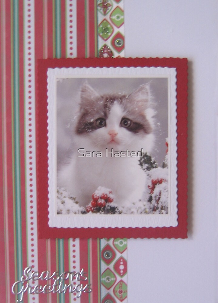 Cat Christmas Card  by Sara Hasted