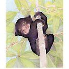 Sun Bear Cub - Save the Sun Bear! by Mariana Musa