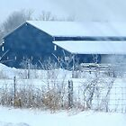 Blue Barn in the Snow by Sandra Fortier