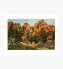 Red Canyon Morning Art Print