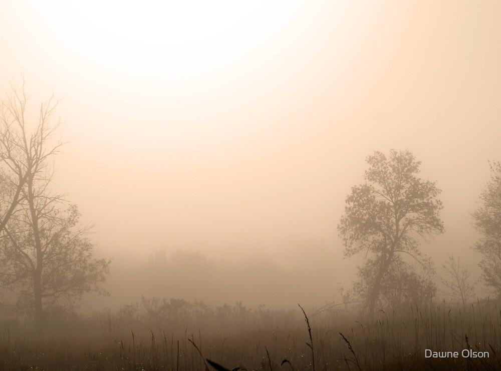 Dawn's Blush by Dawne Olson
