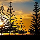 Busselton Foreshore by Peter Evans