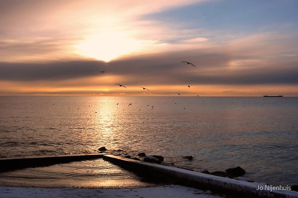 Early Morning Flight by Jo Nijenhuis