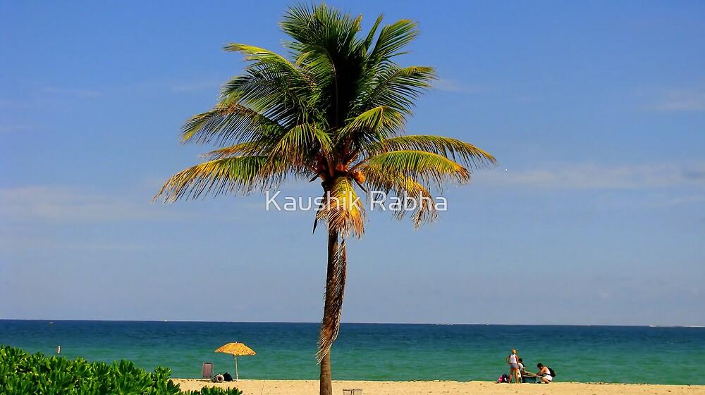 The Coconut Tree by Kaushik Rabha