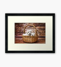 Two Martian puppies in the basket Framed Print