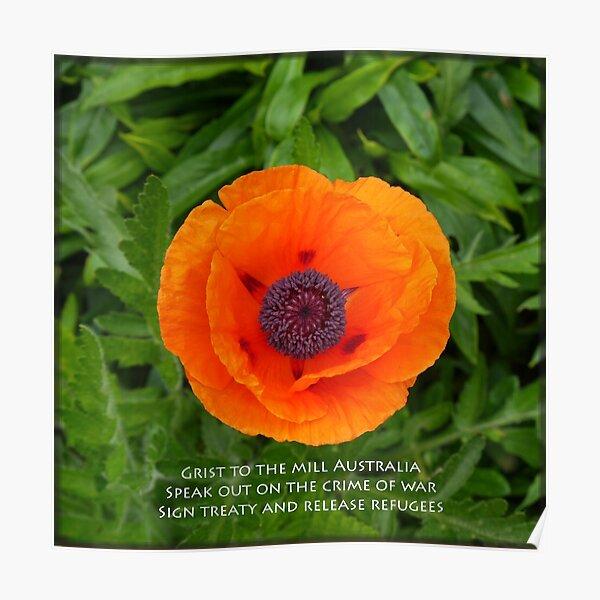 Poppy by Fern Smith Poster