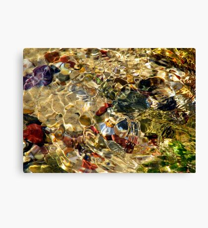 From the Sea Canvas Print