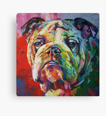 English Bulldog Canvas Print