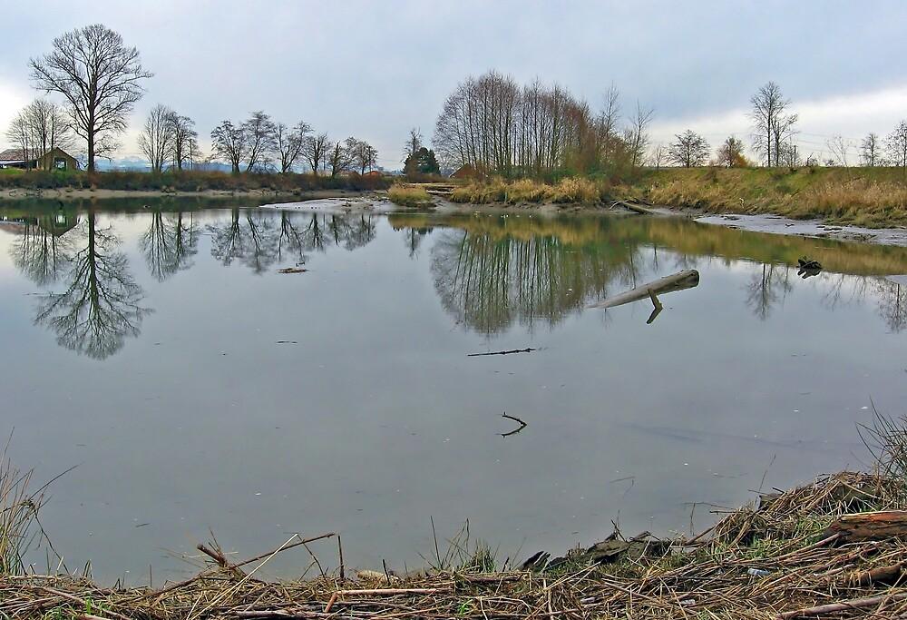 River Reflection by Corey Bigler