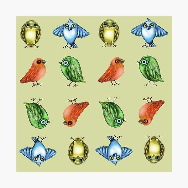 Bird Pattern Photographic Print