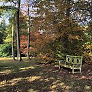 Autumn Rest by duroo