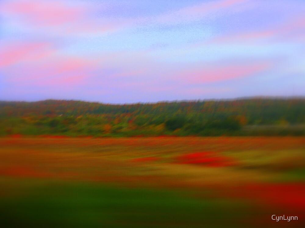 A Blur of Fall Color by CynLynn
