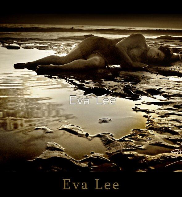 Tidepool by Eva  Lee