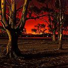 Horizon Burning by Alex Stojan