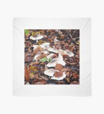 forest floor with mushrooms Tuch