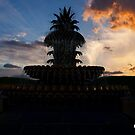 Silhouette of the Pineapple Fountain in Charleston by TJ Baccari Photography