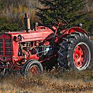 'Ol Red... by Normcar