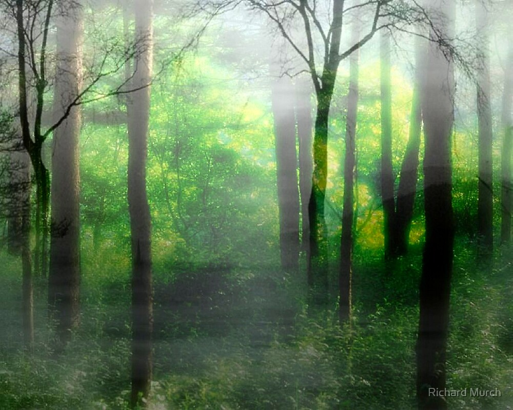 Two Forests by Richard Murch