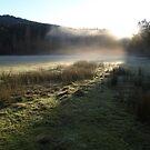 Morning Fog by HildaJorgensen