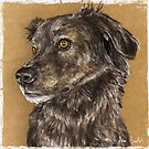 Painting of a Cute Furry Brown Dog by ibadishi