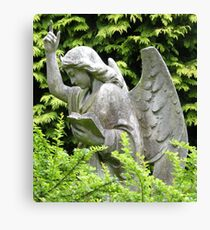 Don't blink, don't look away! Canvas Print