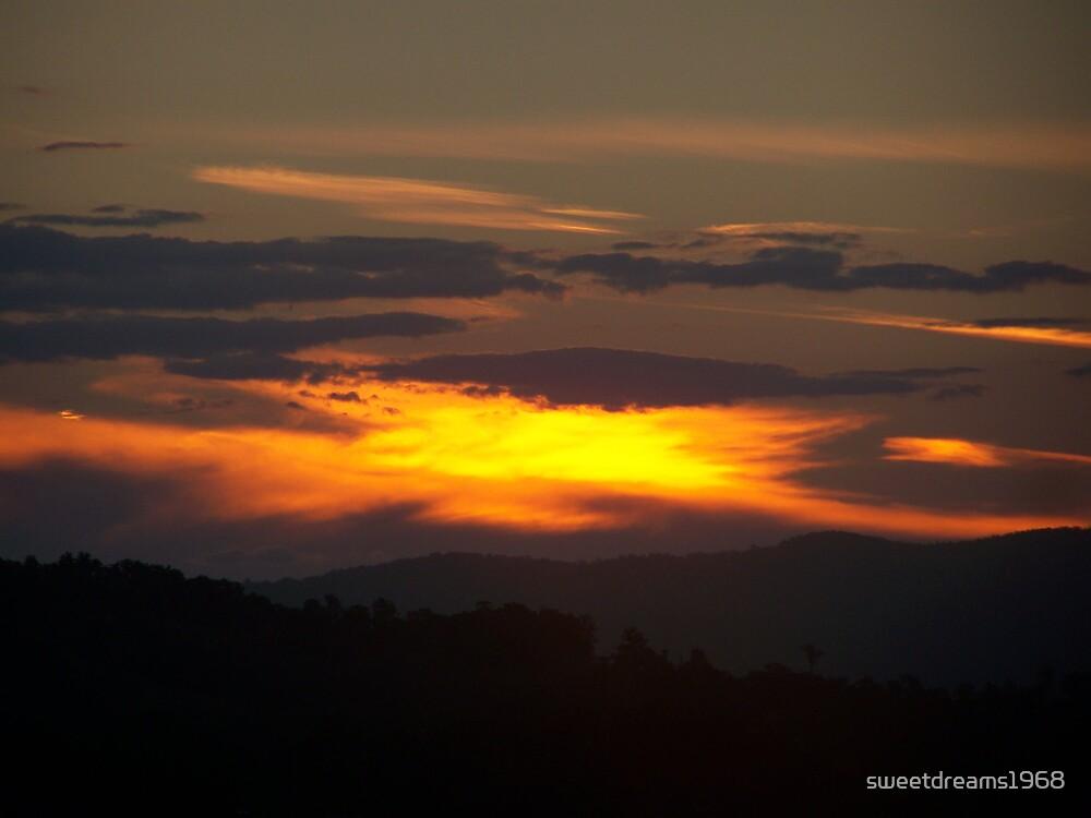 Blazing Skies by Carol Field