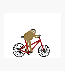 Sloth Riding A Red Bicycle  Photographic Print
