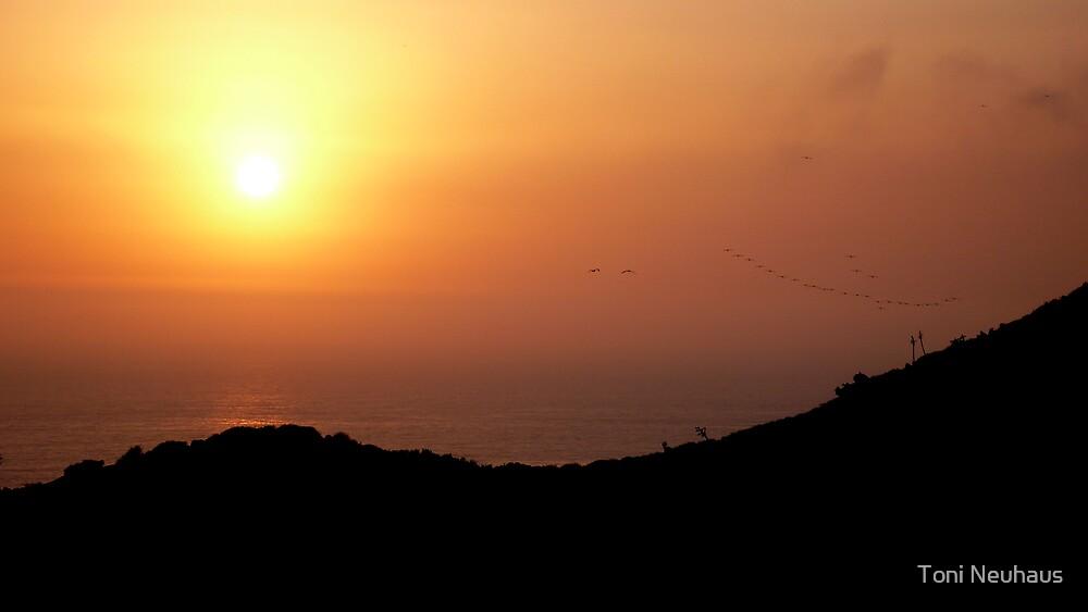 Sunset by Toni Neuhaus