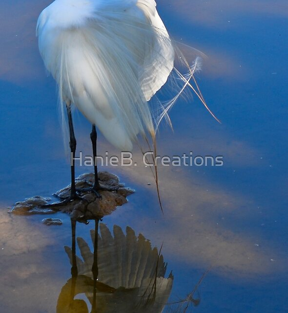 Reflect on Wing by HanieBCreations