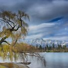 Remarkable Queenstown by Linda Cutche