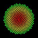 Phyllotaxis-004 by Rupert Russell