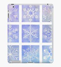 Winter Window iPad Case/Skin