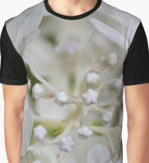 Daydreams Graphic T-Shirt