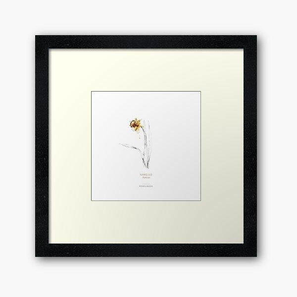 Narciso Lámina enmarcada