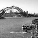 Sydney by Francis Bastoli