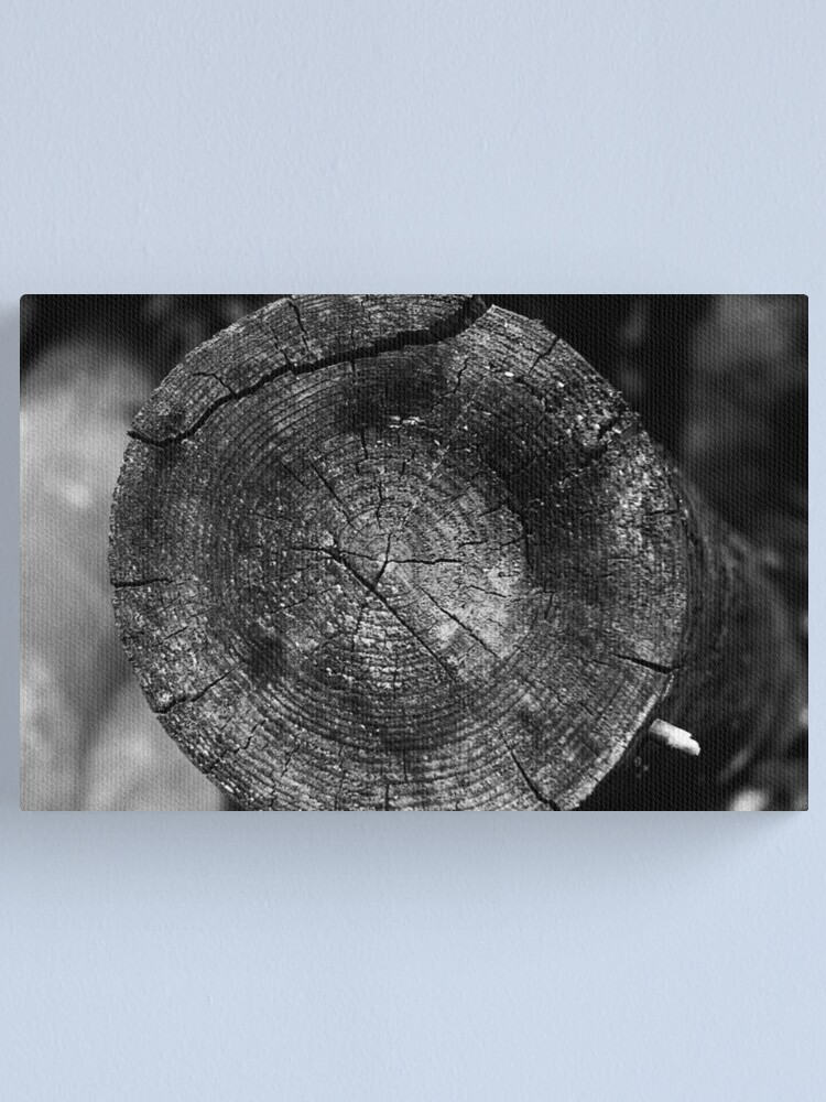 Alternate view of Wood Canvas Print