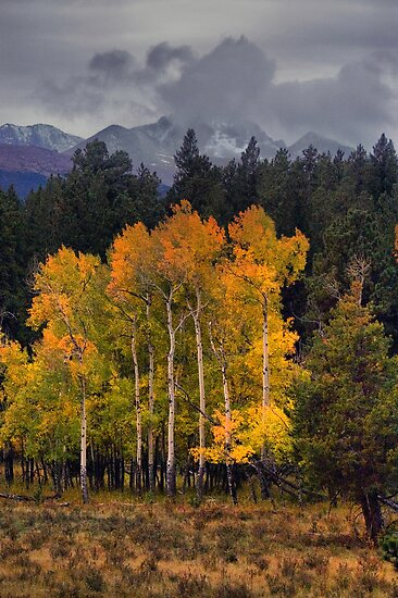 A Stormy Autumn by John  De Bord Photography