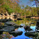 Big Rock - Beargrass Creek - Cherokee Park  by LizzieMorrison