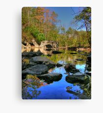Big Rock - Beargrass Creek - Cherokee Park  Canvas Print