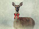 Christmas Deer by FrankieCat