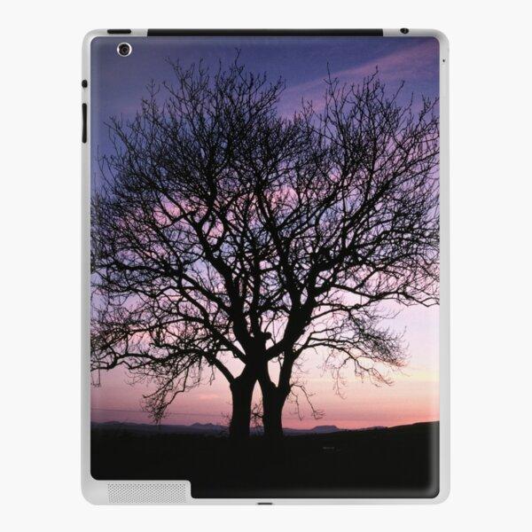 Two Trees embracing iPad Skin