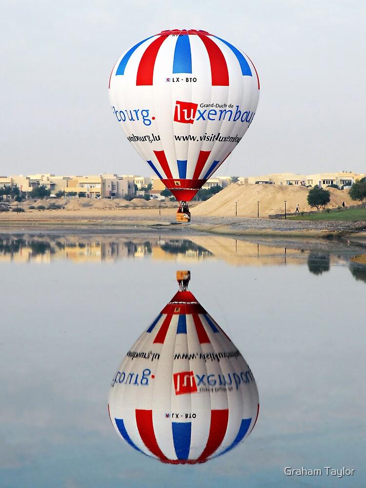 Reflective Balloon by Graham Taylor
