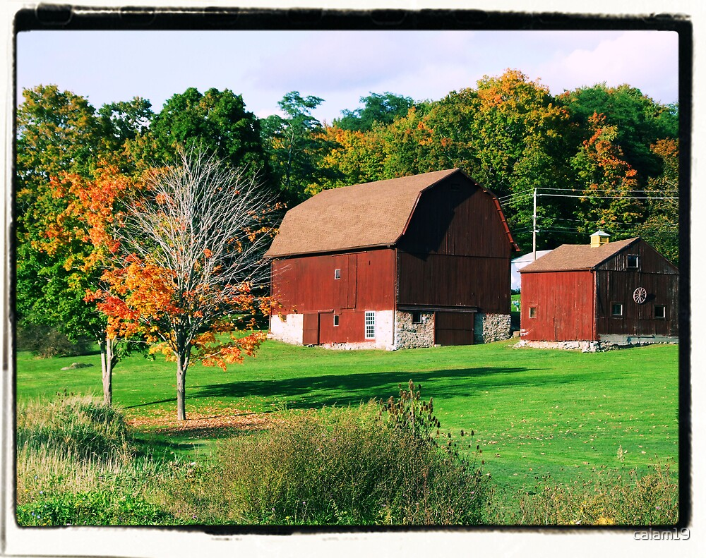 Red Barn by calam19