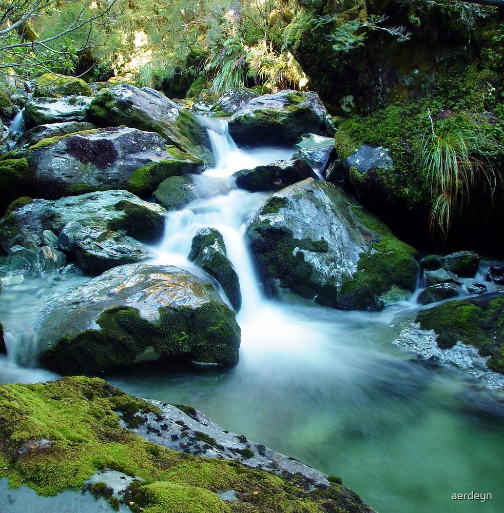 Forest Stream, Routeburn Track, New Zealand by aerdeyn