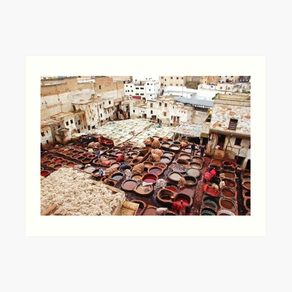 A tannery in Fes Art Print
