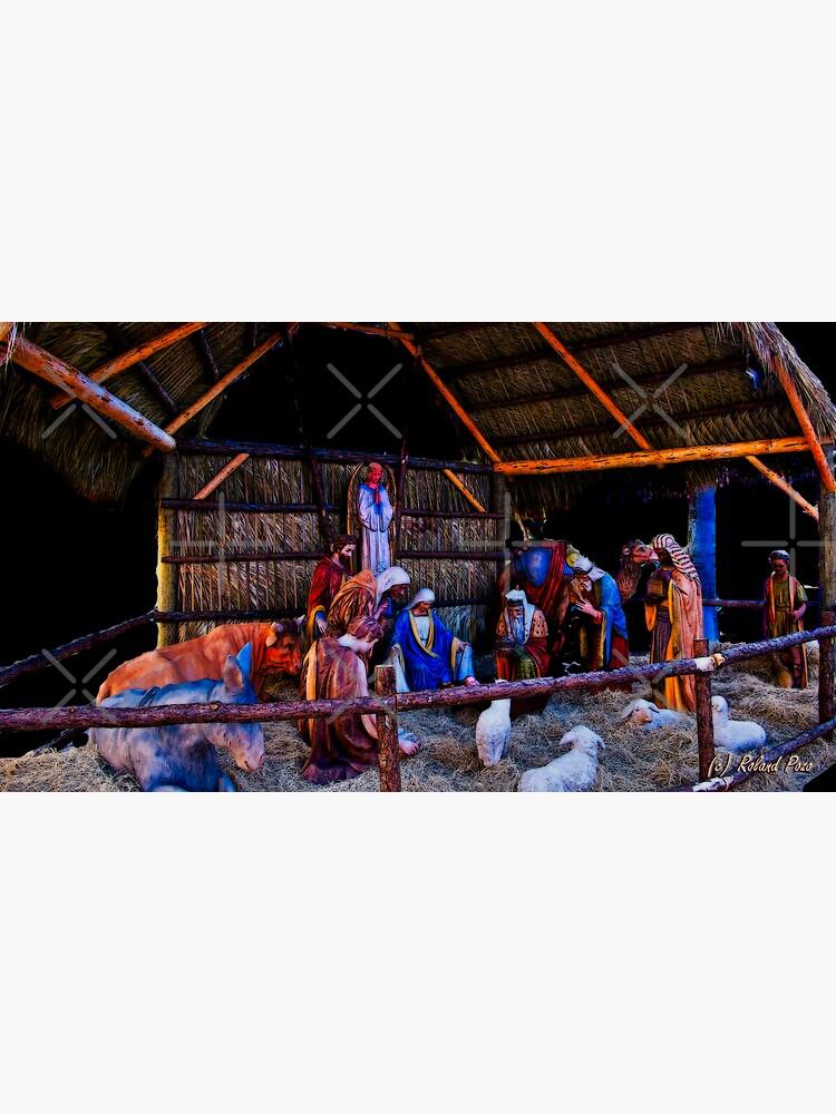 Nativity Scene by photorolandi