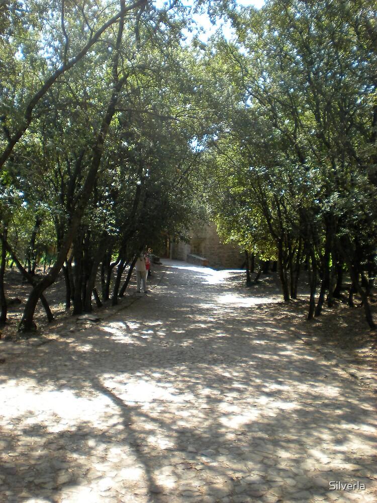 The Monastery Path by Silverla