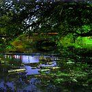 Cherokee Park  by LizzieMorrison