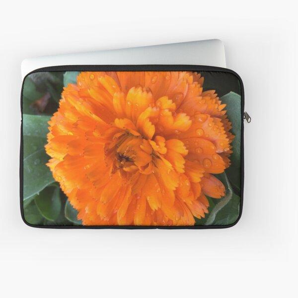 Marigold with Raindrops Laptop Sleeve