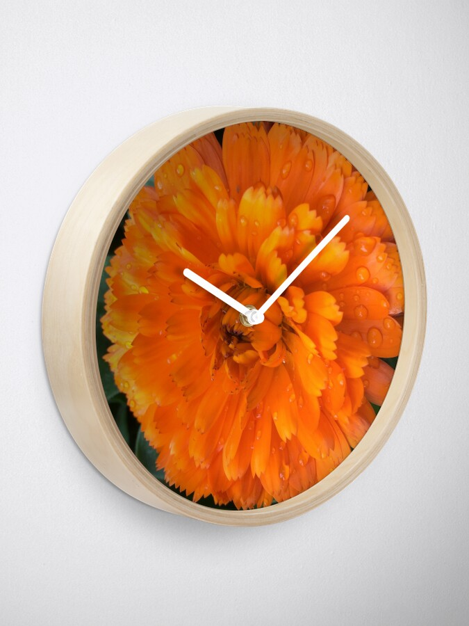 Alternate view of Marigold with Raindrops Clock